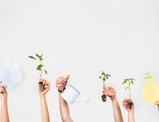 6 dicas para uma casa mais sustentável